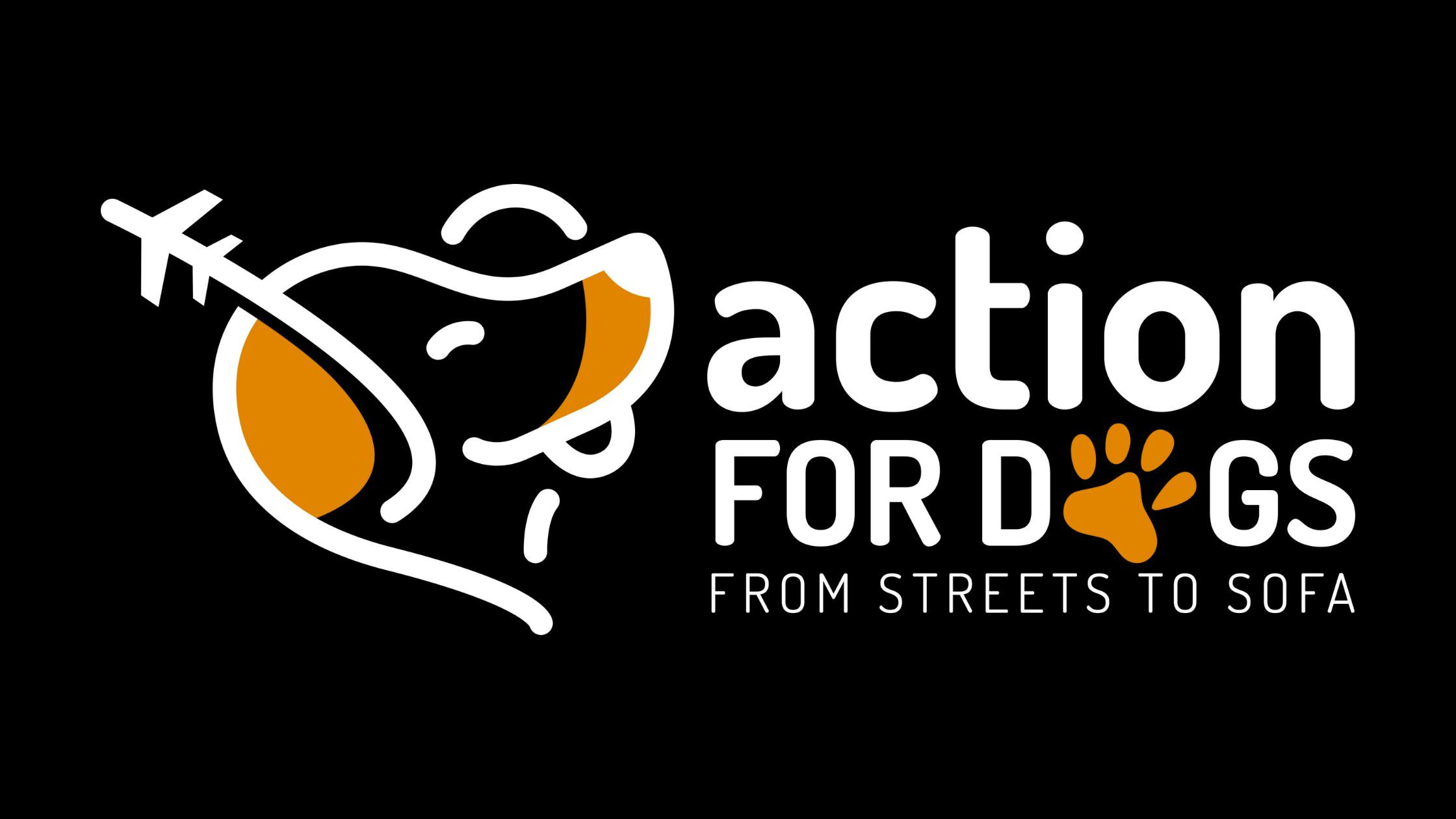 International-homeless-animals-day